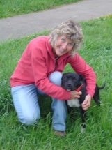Dog training, Dog walking Newton Abbot